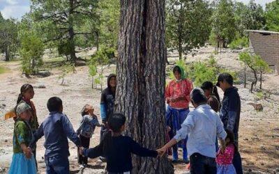 Taller para jóvenes de la comunidad de Huitosachi: Cuidado del medio ambiente