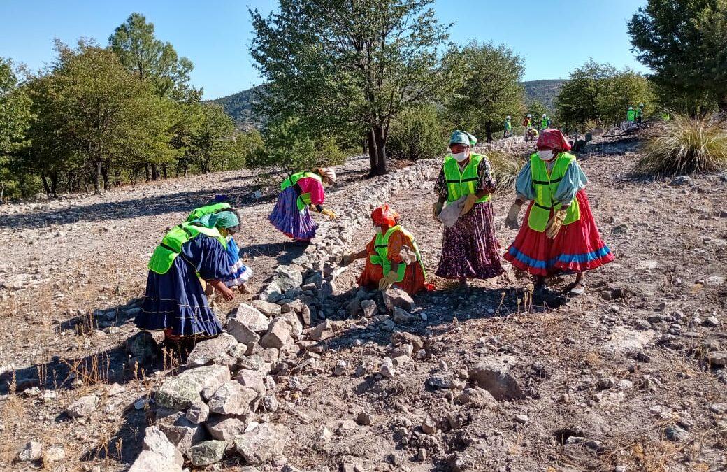 Arranque de obras en comunidades: Conservación de suelos