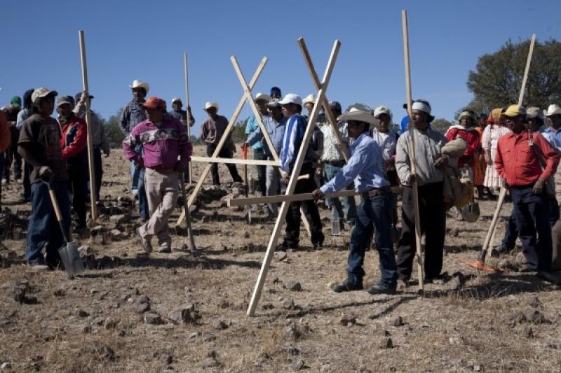 Galería Agricultura 2012