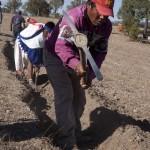 Taller de Agricultura 2012