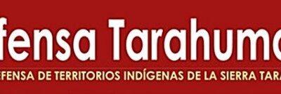 Denunciamos las nuevas agresiones a integrantes de las comunidades ódami en el estado de Chihuahua y exigimos atención inmediata